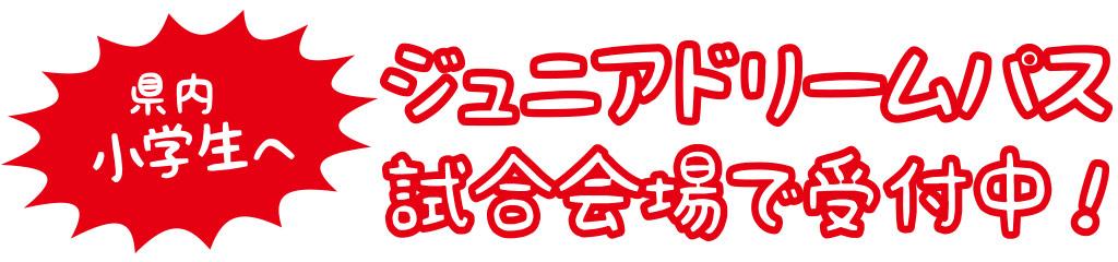 観戦ガイド(ジュニアドリームパス)